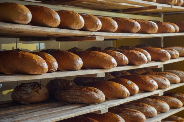 Slovenskí pekári čelia neprimeranému cenovému tlaku aj po zrušení osobitného odvodu