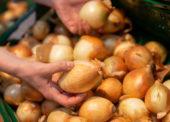 Tesco zvyšuje podiel slovenskej zeleniny