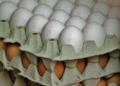 Obchodníci a ochranárske združenia tlačia na producentov vajec