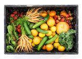 Tovar&Predaj 11 – 12/2019: Záujem o ovocie a zeleninu rastie
