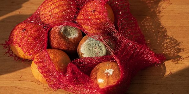 Tesco znížilo potravinový odpad o 71 %