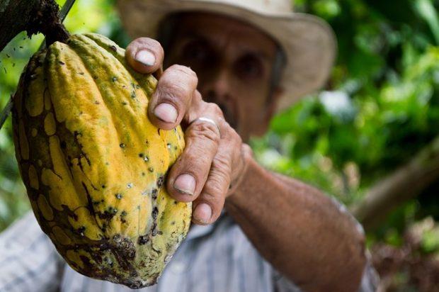 Záujem o tovar s certifikáciou Fairtrade v Česku a na Slovensku rastie
