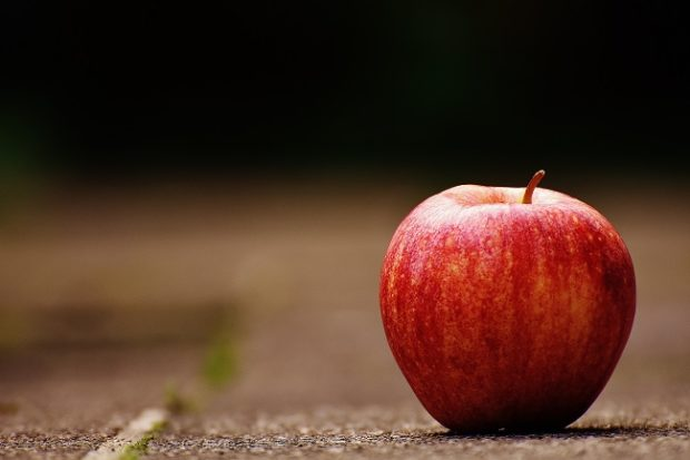 Ako sa zmenili stravovacie návyky Slovákov?