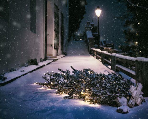 IKEA vytvorí nábytok z použitých vianočných stromčekov