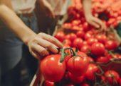 Na Slovensku je viac ako 100 potravinových púští
