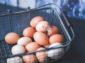 Slovenských vajec je dostatok, podiel z alternatívnych chovov sa zvyšuje