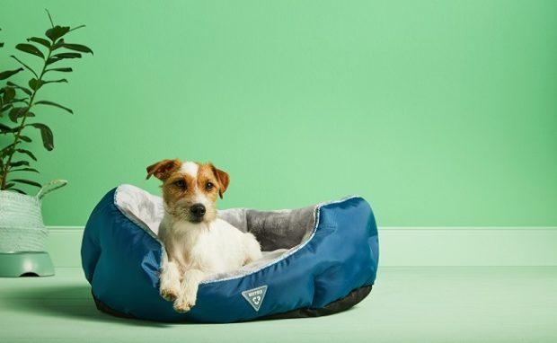 Kaufland zaradil do svojej ponuky výrobky pre zvieratá z recyklovaných plastov