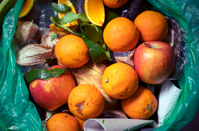Plytvanie potravinami nás stojí stovky eur. Od júla zabezpečia zber bioodpadu samosprávy